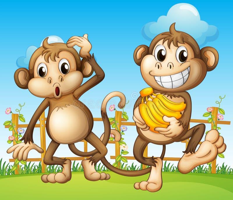 Δύο πίθηκοι με την μπανάνα μέσα στη φραγή διανυσματική απεικόνιση