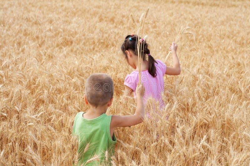 Δύο παιδιά σε ένα πεδίο σίτου στοκ φωτογραφίες με δικαίωμα ελεύθερης χρήσης