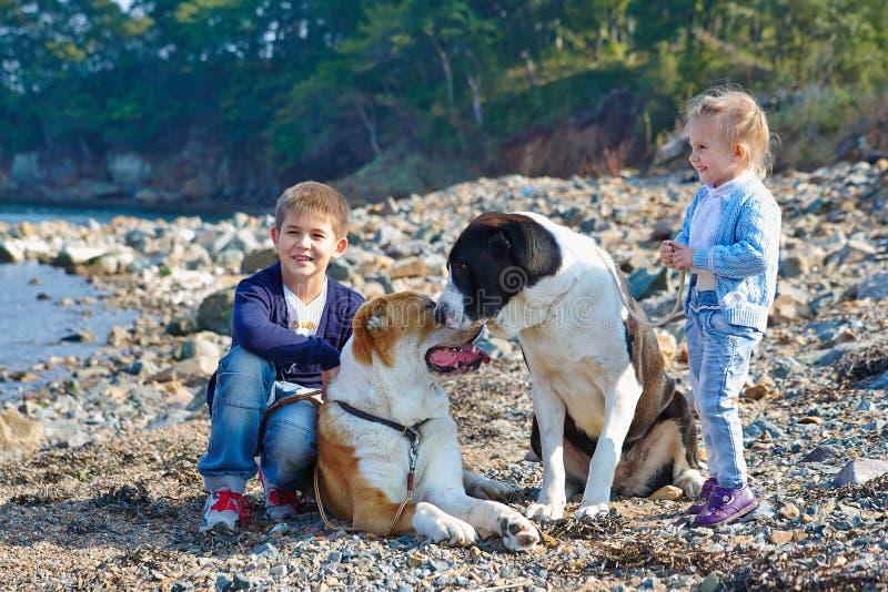 Δύο παιδιά, δύο μεγάλα σκυλιά στοκ εικόνες