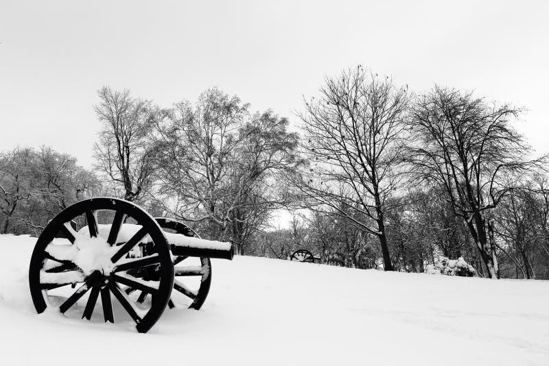 Δύο παλαιά πυροβόλα στο χιόνι στο βασιλικό νεκροταφείο υποστηριγμάτων στοκ εικόνα με δικαίωμα ελεύθερης χρήσης