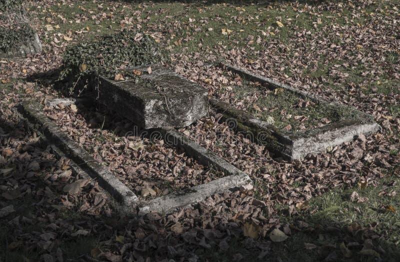 Δύο παλαιοί έκλυτοι εγκαταλειμμένοι τάφοι unkept με τον κισσό και το πεσμένο LE στοκ φωτογραφία με δικαίωμα ελεύθερης χρήσης