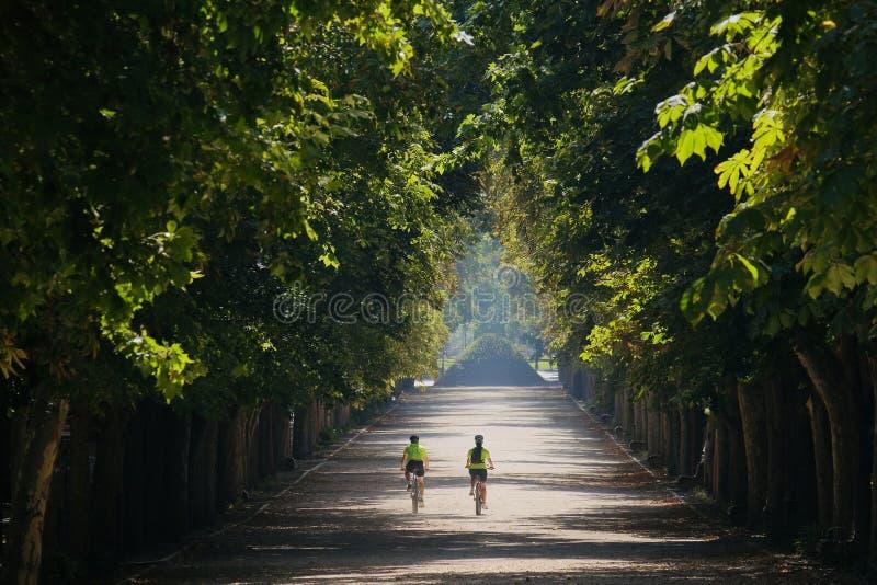 Δύο ποδηλάτες στο πάρκο στοκ εικόνα με δικαίωμα ελεύθερης χρήσης