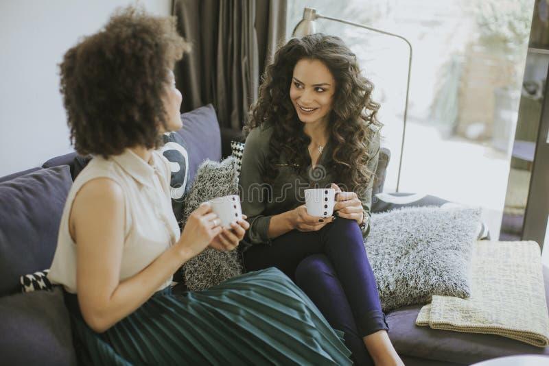 Δύο πολυφυλετικές νέες γυναίκες που κουβεντιάζουν και που πίνουν coffe στοκ εικόνα