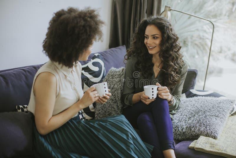 Δύο πολυφυλετικές νέες γυναίκες που κουβεντιάζουν και που πίνουν coffe στοκ φωτογραφία