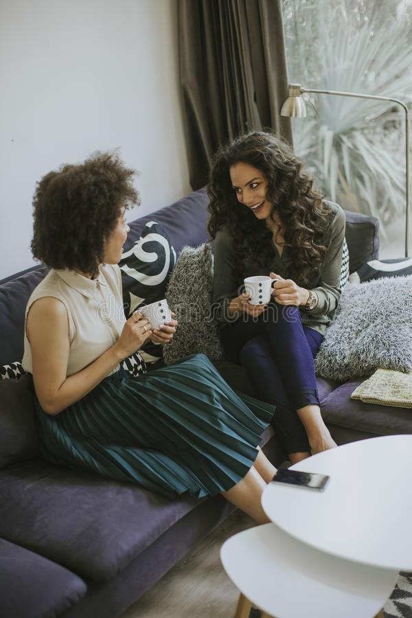 Δύο πολυφυλετικές νέες γυναίκες που κουβεντιάζουν και που πίνουν coffe στοκ εικόνες