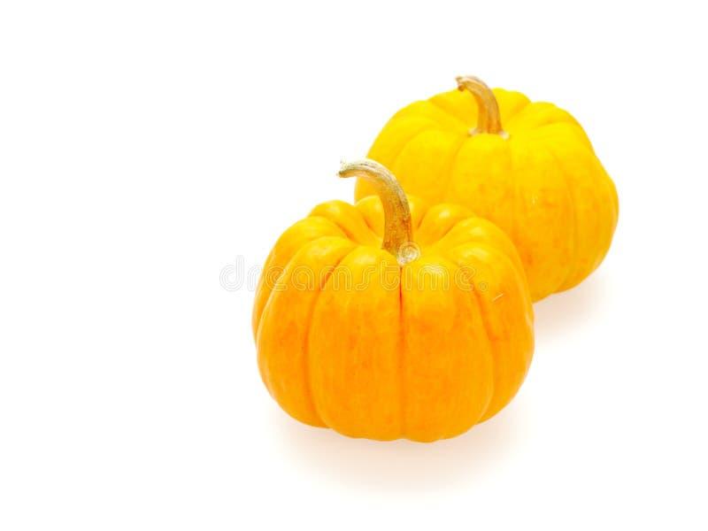 Δύο πορτοκαλιές κολοκύθες στο μεγάλο και μικρό μέγεθος που απομονώνεται στο άσπρο υπόβαθρο στοκ εικόνα