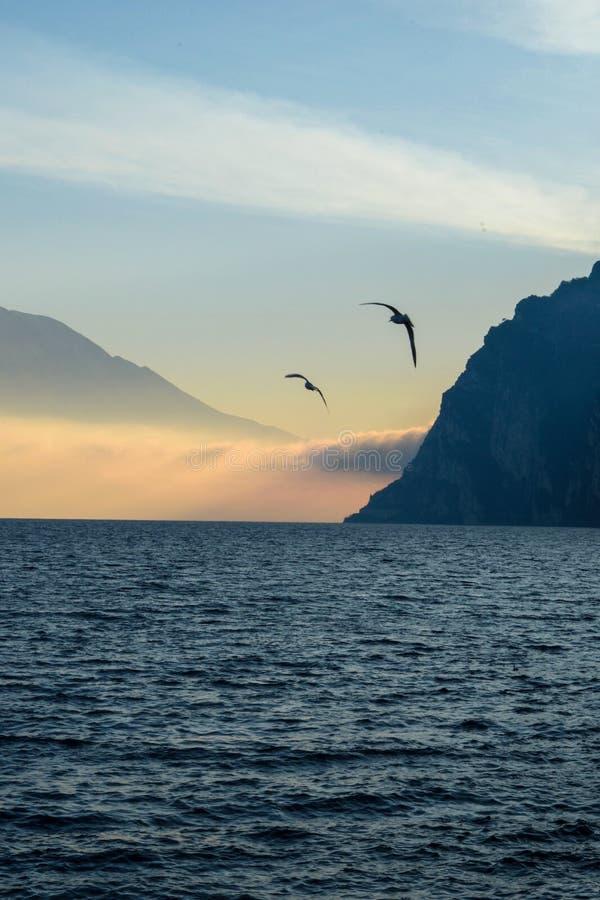 Δύο πουλιά πέρα από τη λίμνη Garda στοκ εικόνα με δικαίωμα ελεύθερης χρήσης