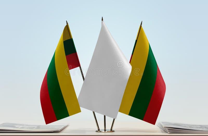 Δύο σημαίες της Λιθουανίας στοκ εικόνες με δικαίωμα ελεύθερης χρήσης