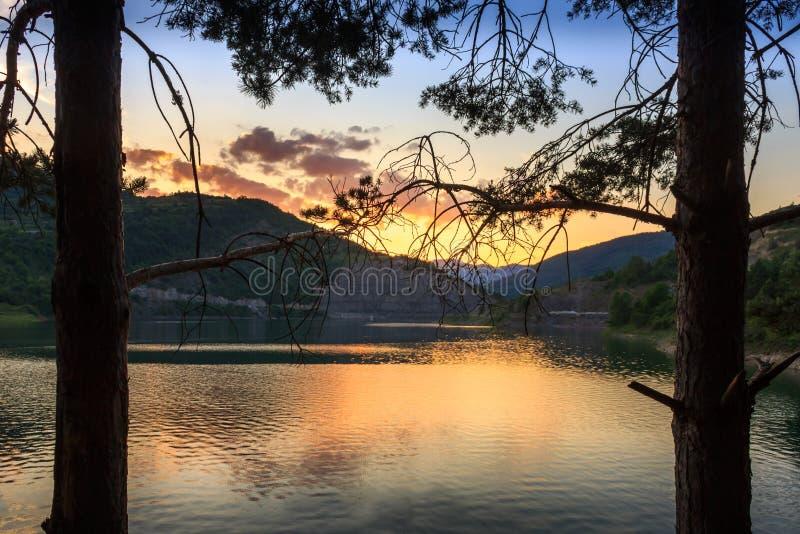 Δύο σκιαγραφίες δέντρων πεύκων που πλαισιώνουν την αντανακλαστική, χρυσή λίμνη Zavoj στοκ εικόνες