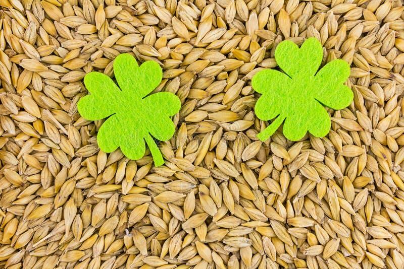 Δύο συμμετρικά πράσινα φύλλα αισθητός μεγάλος στο υπόβαθρο της βάσης σιταριών Αγίου Πάτρικ στοκ εικόνες