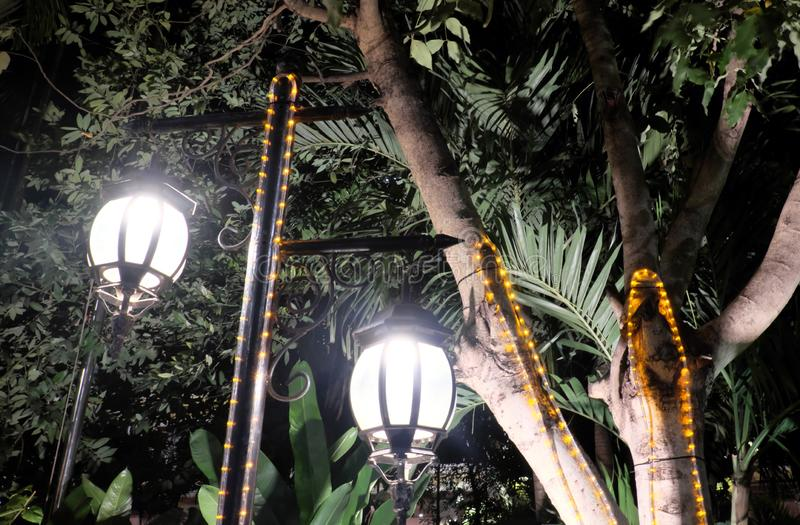 Δύο σφυρηλατημένα εκλεκτής ποιότητας φανάρια φωτίζουν τα φύλλα του δέντρου Φωτεινό φως που προέρχεται από τους λαμπτήρες οδών στοκ εικόνες