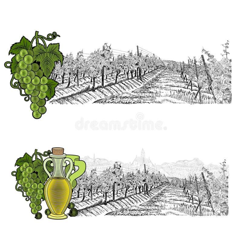Δύο το τοπίο σκίτσων του αμπελώνα και της πόλης επάνω και των στοιχείων χρώματος Άσπρα σταφύλια και σταφύλια με το μπουκάλι του ε απεικόνιση αποθεμάτων