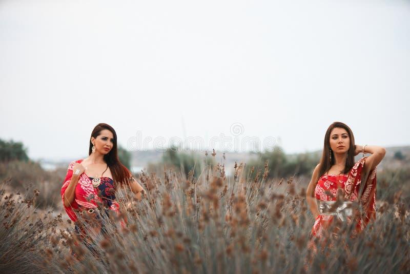 Δύο φίλες στα ζωηρόχρωμα ενδύματα μαντίλι, υπαίθρια πορτρέτο στοκ εικόνα με δικαίωμα ελεύθερης χρήσης
