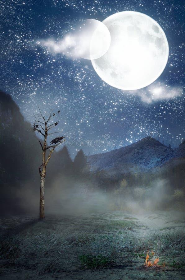 Δύο φεγγάρια πέρα από το μόνο μαραμένο δέντρο στοκ εικόνα με δικαίωμα ελεύθερης χρήσης
