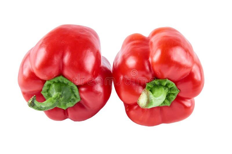 Δύο φρέσκα πιπέρια που απομονώνονται στο άσπρο υπόβαθρο Υπόβαθρο της οργανικής τροφής στοκ εικόνα με δικαίωμα ελεύθερης χρήσης