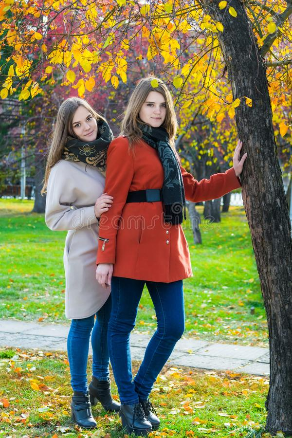 Δύο όμορφες φίλες μια ηλιόλουστη ημέρα φθινοπώρου στοκ φωτογραφία με δικαίωμα ελεύθερης χρήσης