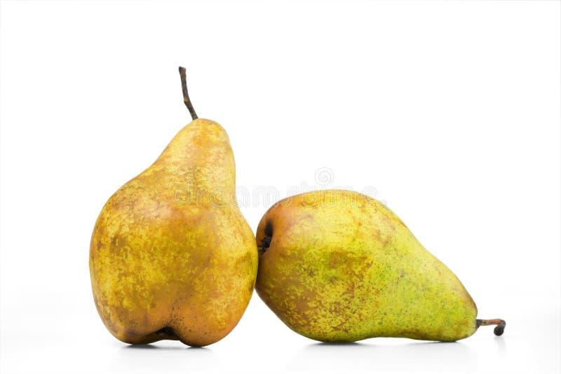 Δύο ώριμα αχλάδια είναι απομονωμένα σε ένα άσπρο υπόβαθρο, στοκ εικόνες με δικαίωμα ελεύθερης χρήσης