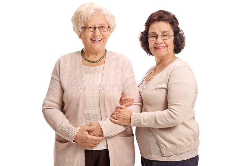 Δύο ώριμες γυναίκες που εξετάζουν τη κάμερα και το χαμόγελο στοκ εικόνα με δικαίωμα ελεύθερης χρήσης
