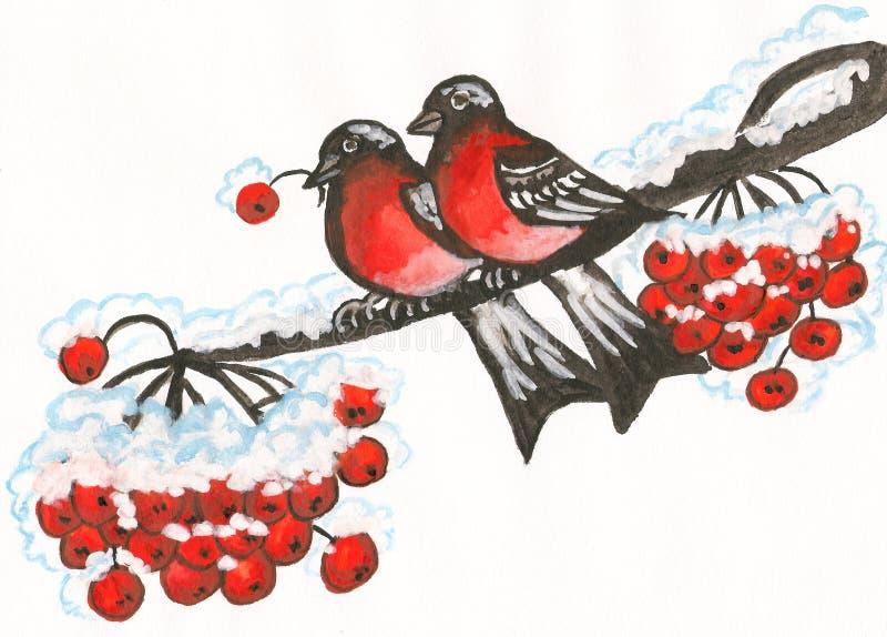 Δύο bullfinches, ζωγραφική απεικόνιση αποθεμάτων