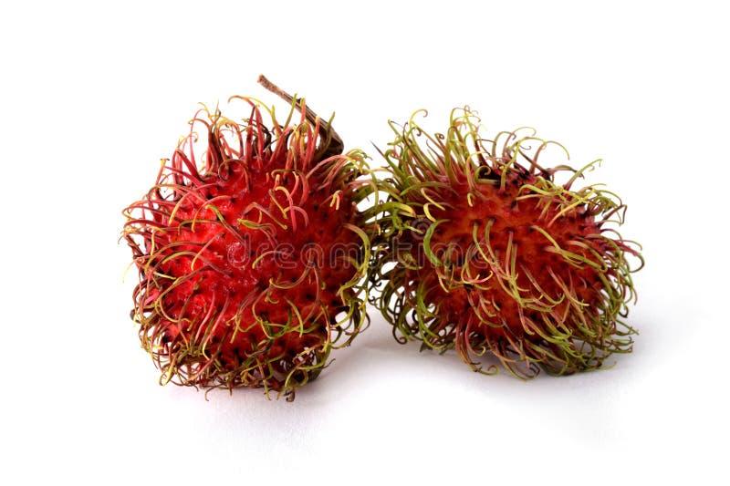 Δύο rambutan στοκ εικόνα
