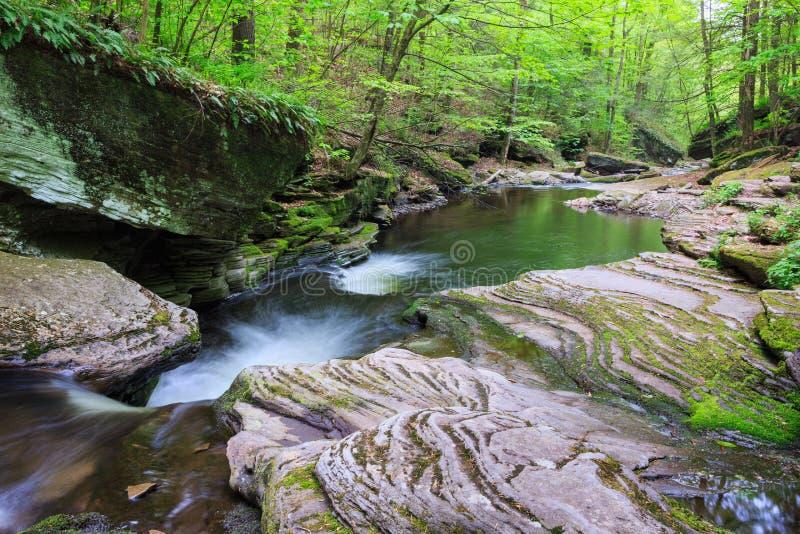 Δύσκολο πράσινο ρεύμα οάσεων τοπίων βουνών στοκ εικόνες με δικαίωμα ελεύθερης χρήσης