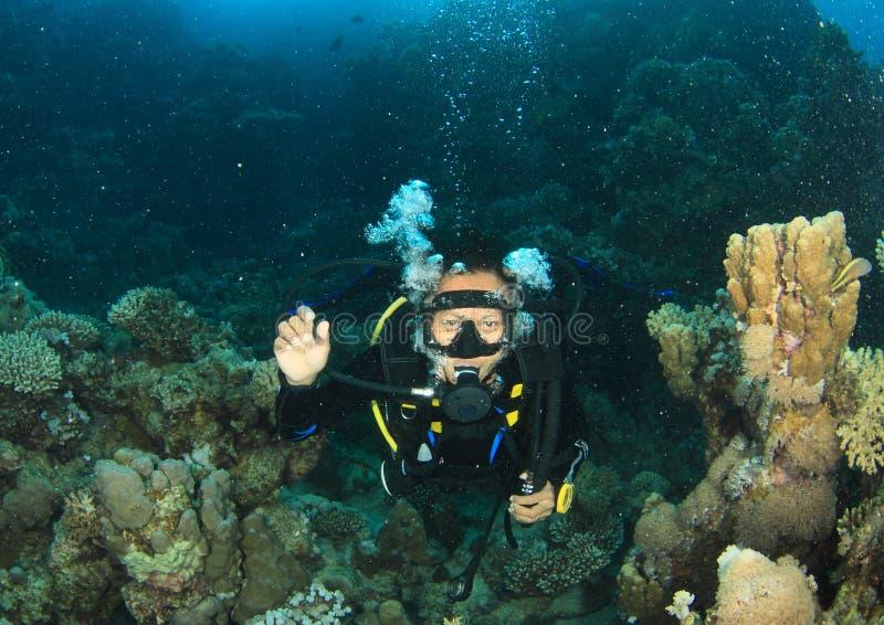 Δύτης - κορίτσι υποβρύχιο στοκ φωτογραφία με δικαίωμα ελεύθερης χρήσης