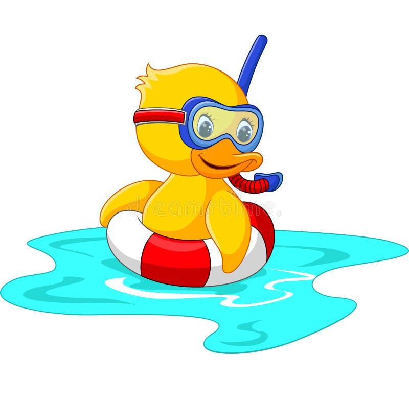 Δύτης παπιών με την κολύμβηση απεικόνιση αποθεμάτων