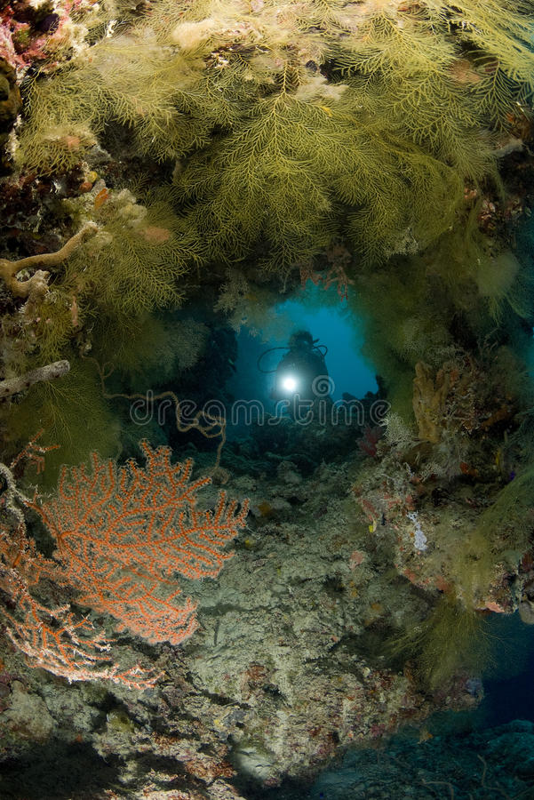 Δύτης ΣΚΑΦΑΝΔΡΩΝ και υποβρύχια σπηλιά στοκ εικόνες