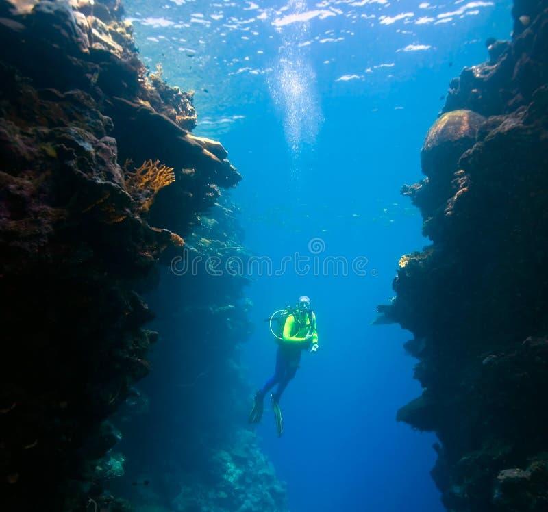δύτης υποβρύχιος στοκ εικόνα