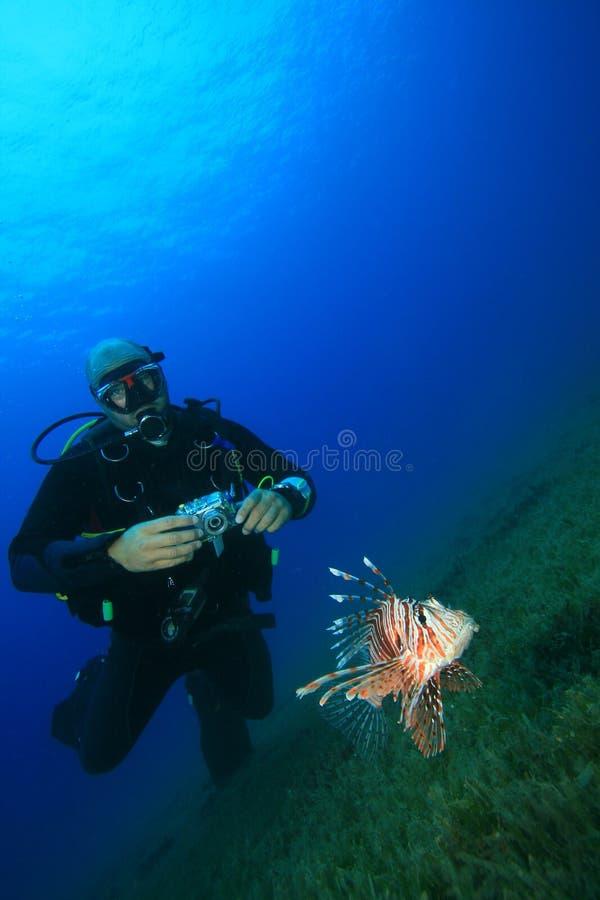 Δύτης Lionfish και σκαφάνδρων στοκ εικόνα με δικαίωμα ελεύθερης χρήσης