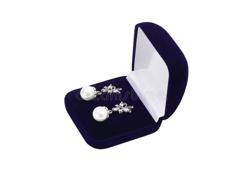 δώρο σκουλαρικιών κιβω&tau στοκ φωτογραφία με δικαίωμα ελεύθερης χρήσης