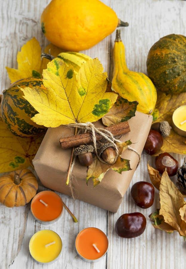 Δώρο φθινοπώρου ημέρας των ευχαριστιών με τη διακόσμηση κολοκυθών και κάστανων στοκ εικόνες