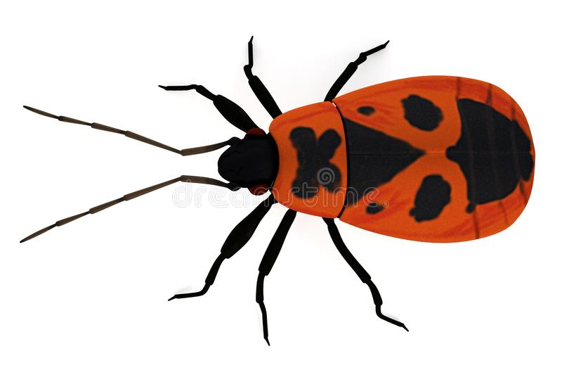 Δώστε του firebug ελεύθερη απεικόνιση δικαιώματος