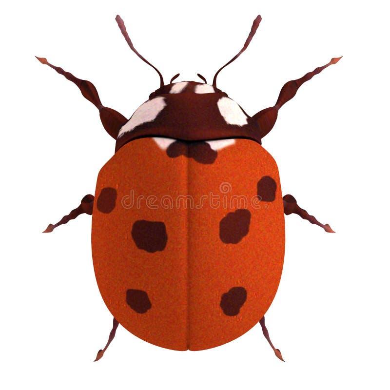 Δώστε του ladybug απεικόνιση αποθεμάτων