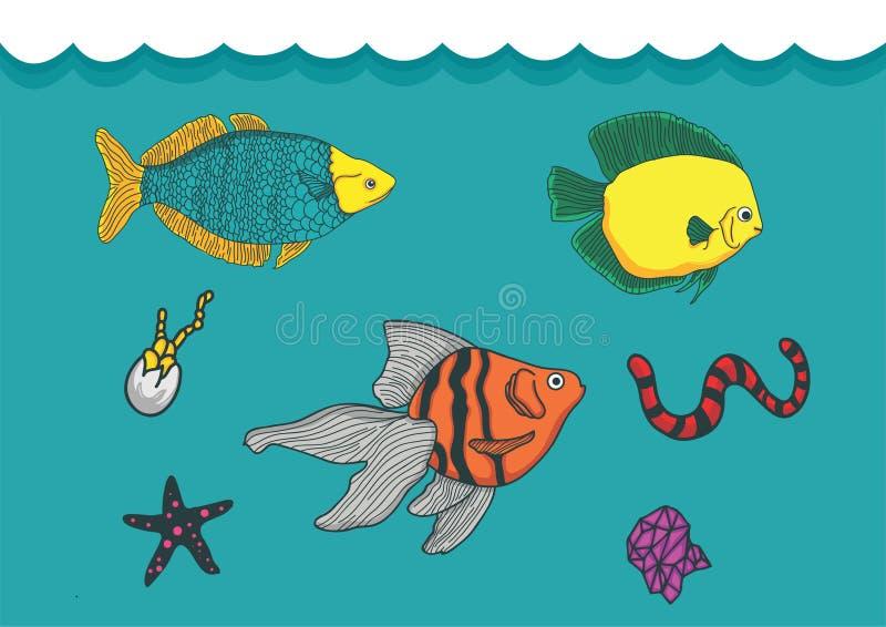 Είδη βιόκοσμου στον ωκεανό ελεύθερη απεικόνιση δικαιώματος