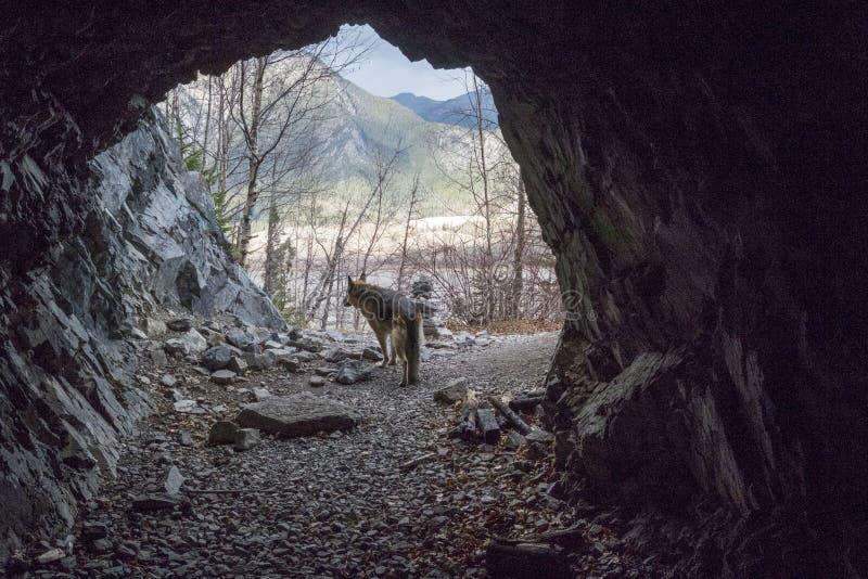 Είσοδος στη δύσκολη σπηλιά υπόγειων θαλάμων και αρχείων βουνών στοκ φωτογραφία με δικαίωμα ελεύθερης χρήσης