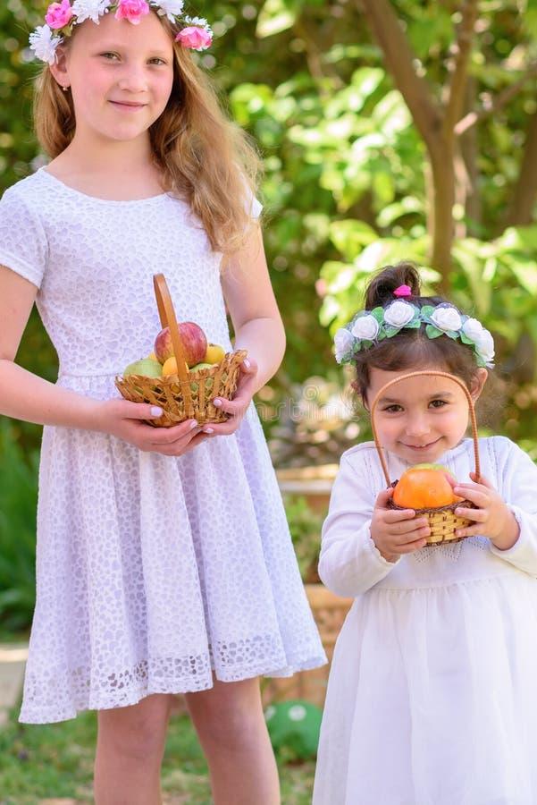 Εβραϊκές διακοπές Shavuot Τα μικρά κορίτσια HarvestTwo στο άσπρο φόρεμα κρατούν ένα καλάθι με τους νωπούς καρπούς σε έναν θερινό  στοκ εικόνα με δικαίωμα ελεύθερης χρήσης