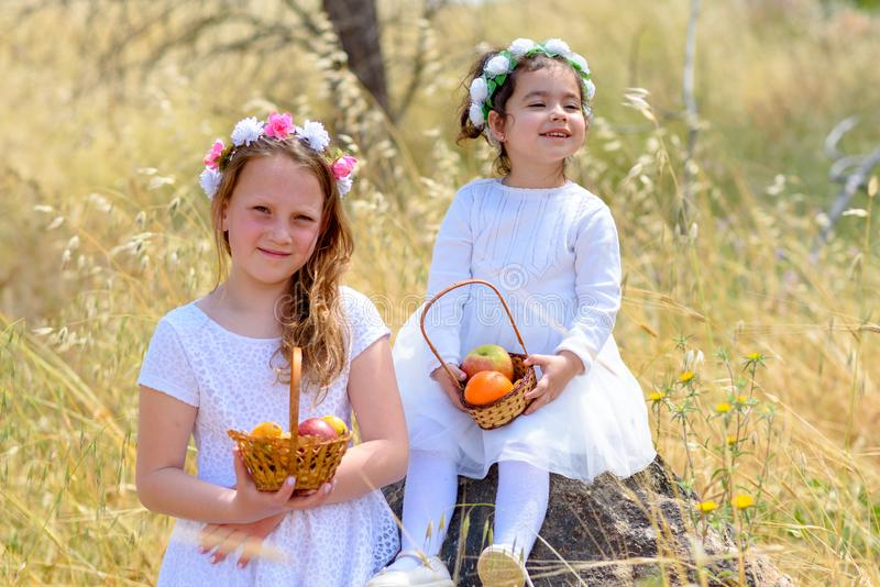 Εβραϊκές διακοπές Shavuot Τα μικρά κορίτσια HarvestTwo στο άσπρο φόρεμα κρατούν ένα καλάθι με τους νωπούς καρπούς σε έναν τομέα σ στοκ φωτογραφίες