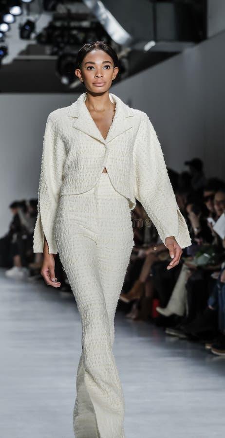 Εβδομάδα FW 2017 μόδας της Νέας Υόρκης - ωχρή συλλογή Jung γιων στοκ εικόνα