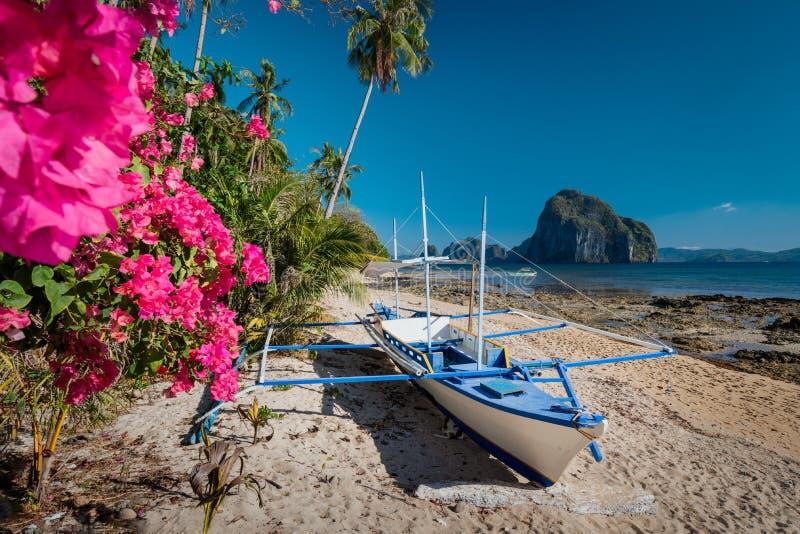 Εγγενής βάρκα banca και δονούμενα λουλούδια στην παραλία Las cabanas με το καταπληκτικό νησί Pinagbuyutan στο υπόβαθρο Εξωτική φύ στοκ εικόνα με δικαίωμα ελεύθερης χρήσης