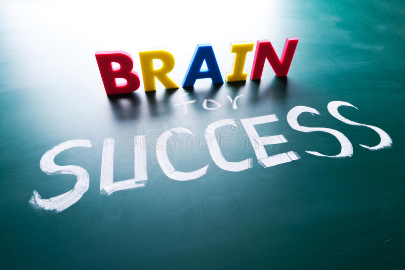 Εγκέφαλος για την έννοια επιτυχίας στοκ εικόνες με δικαίωμα ελεύθερης χρήσης