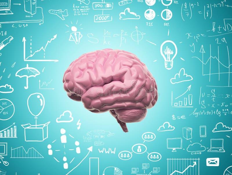 Εγκέφαλος τρισδιάστατος διανυσματική απεικόνιση