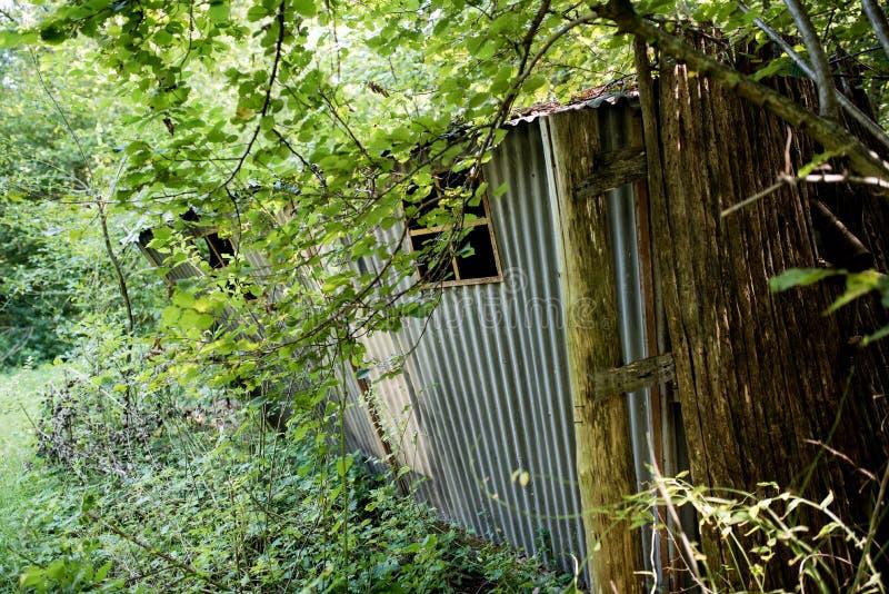 Εγκατέλειψε λίγη αποθήκη εμπορευμάτων σε ένα δάσος στοκ φωτογραφία