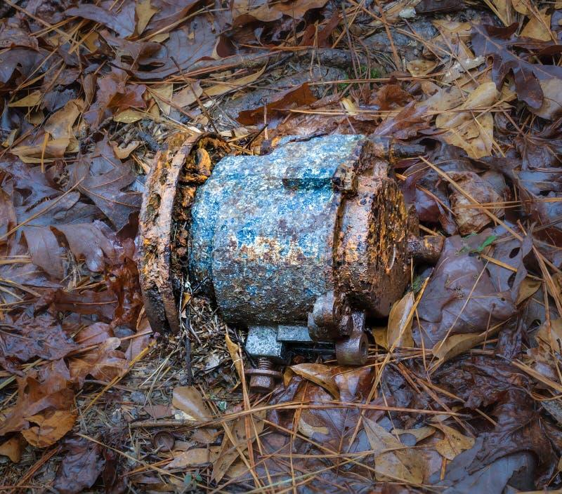 Εγκαταλειμμένος εναλλάκτης χαμένος στα ξύλα στοκ φωτογραφίες με δικαίωμα ελεύθερης χρήσης