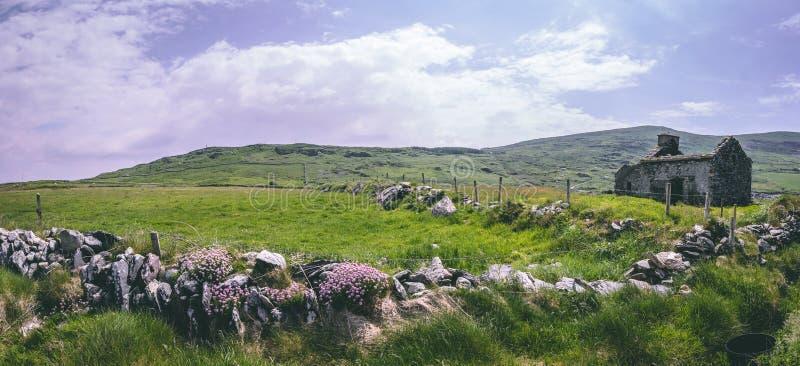 Εγκαταλειμμένο σπίτι βράχου χωρίς μια στέγη στους πράσινους τομείς πέρα από το φάρο Valentia στο σημείο του Κρόμγουελ στοκ εικόνες με δικαίωμα ελεύθερης χρήσης