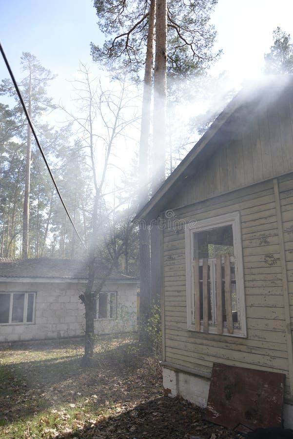 Εγκαταλειμμένο σπίτι στο δάσος και τις ακτίνες ήλιων ` s που φιλτράρουν μέσω των πεύκων στοκ φωτογραφία με δικαίωμα ελεύθερης χρήσης