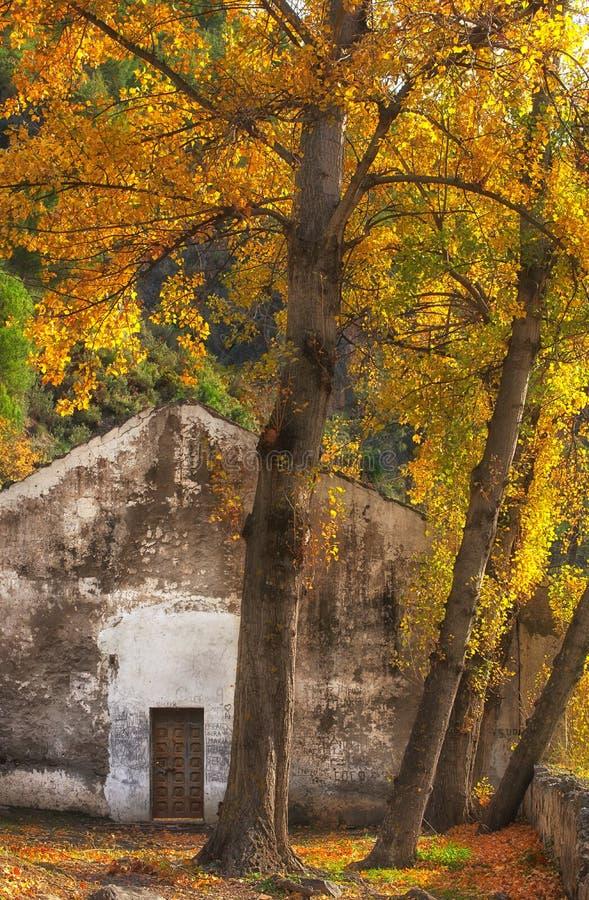 Εγκαταλελειμμένο κτίριο στη σκιά των φθινοπωρινών δέντρων στοκ εικόνα
