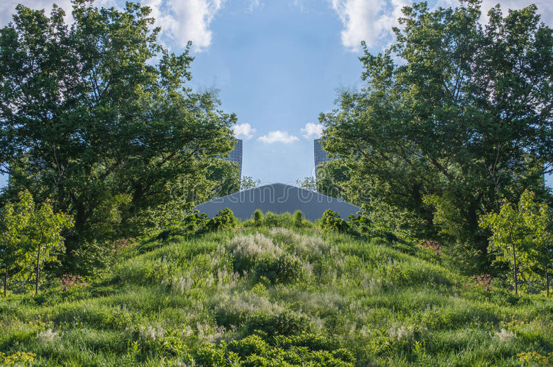 Εγκαταστάσεις, δέντρα και βαλτότοπος στοκ εικόνα με δικαίωμα ελεύθερης χρήσης