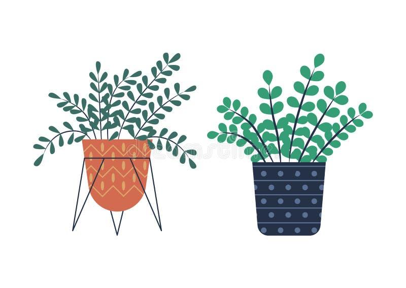 Εγκαταστάσεις θερμοκηπίων που αυξάνονται στα δοχεία, λουλούδια καθορισμένα απεικόνιση αποθεμάτων