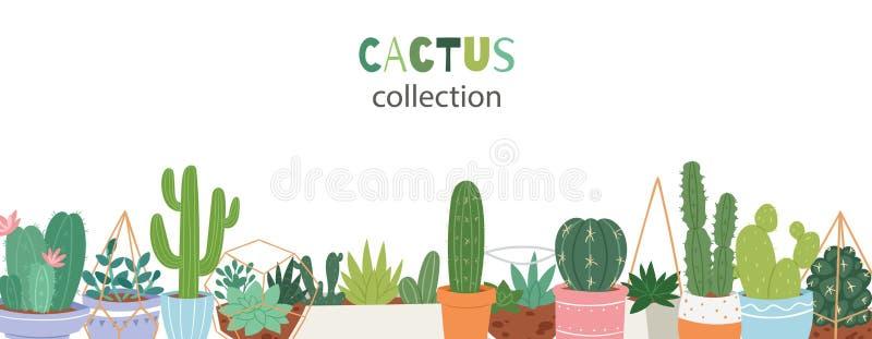 Εγκαταστάσεις κάκτων στην αγγειοπλαστική κήπων με την πράσινη γραπτή χέρι πηγή Πράσινοι κάκτοι, aloe Βέρα, κάκτος με τα λουλούδια διανυσματική απεικόνιση